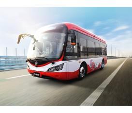 8.5米圆头公交车