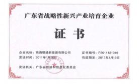 廣(guang)東省戰略性新興產業(ye)骨干培育企業(ye)